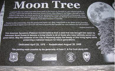 Moon tree marker