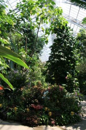 Christopher Walken Gardener Afraid Of 118 Best Images