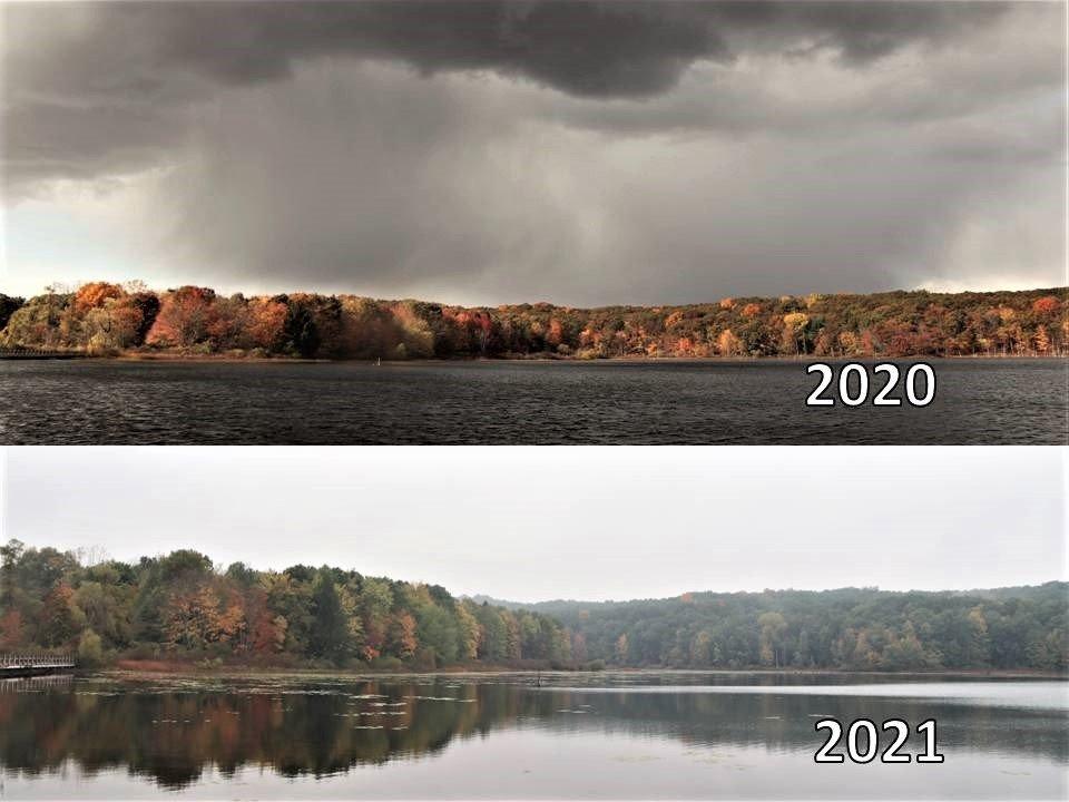 Fall Color Comparison